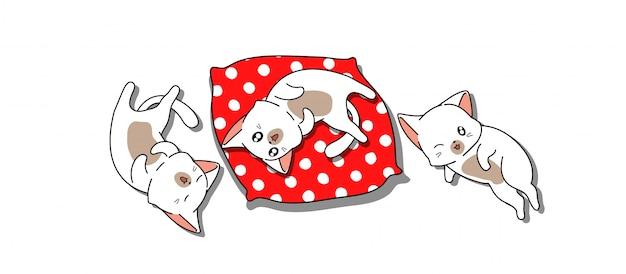 Sztandar 3 małe koty śpią