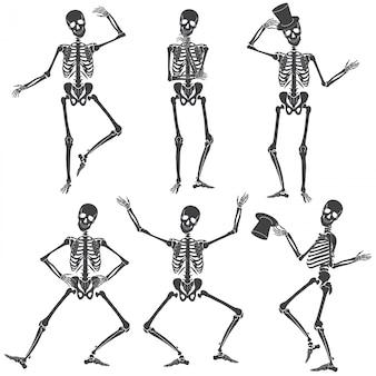 Tańczące szkielety. różne pozy szkieletu na białym tle.
