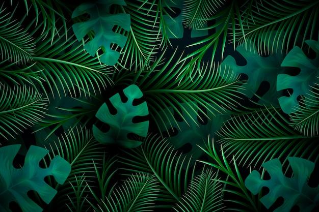 Tapeta tropikalnych liści do powiększenia