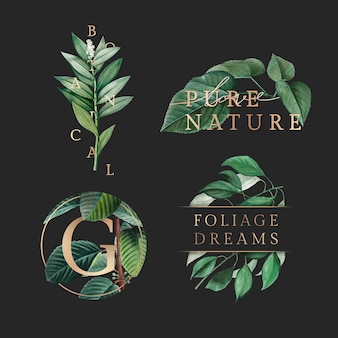 Tapeta z liści natury