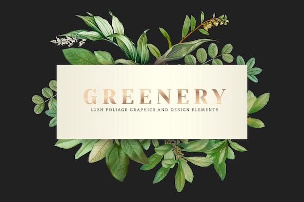 Tapeta zieleni
