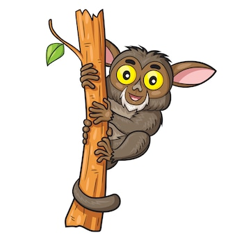 Tarsius cute cartoon