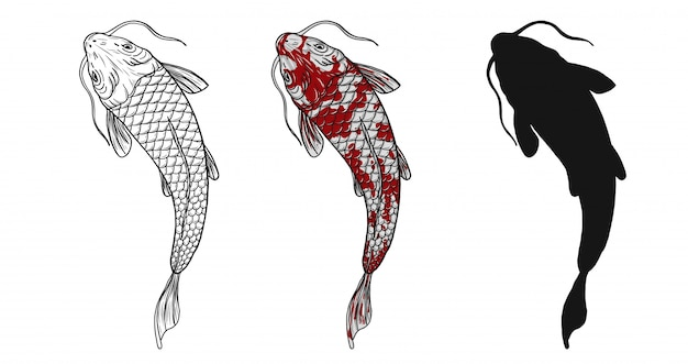 Tatuaż ryb koi odręcznego rysunku