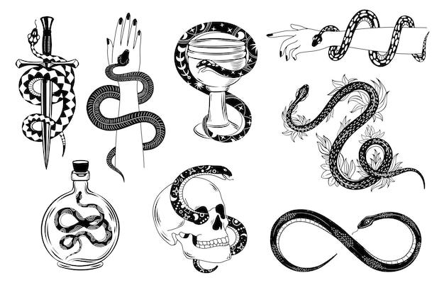 Tatuaż węży. okultystyczny wąż owinięty wokół dłoni, czaszki, sztyletu, miski i trucizny. sylwetka węża w kwiatach. mistyczne tatuaże wektor zestaw. ilustracja tatuaż węża, symbol okultyzmu