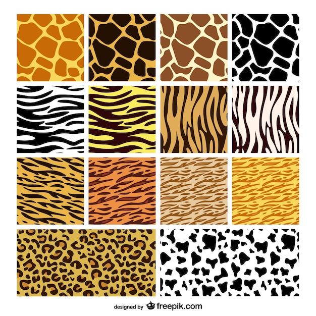 Tekstury skóry zwierząt tło materiał wektor