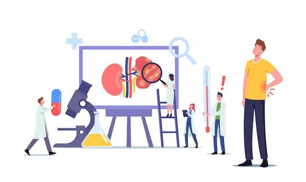 Tiny doctors nefrologist postacie diagnozujące i konsultujące się z pacjentem z odmiedniczkowym zapaleniem nerek, badaniem moczu, konsultacją lekarską, diagnostyką szpitalną lub leczeniem. ilustracja wektorowa kreskówka ludzie