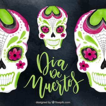 Tła akwarele z mexican czaszki