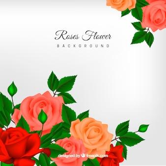 Tle kwiatów w realistycznym stylu