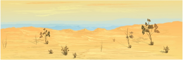 Tle pustyni w teksasie.