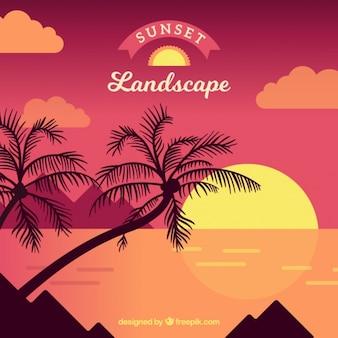 Tle zachodu słońca na plaży z palmami