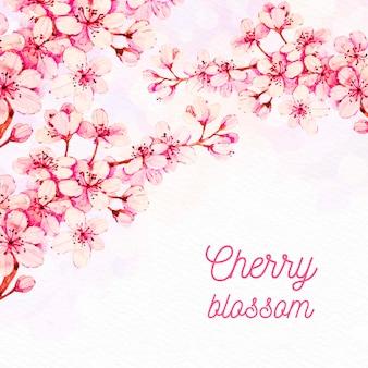 Tło akwarela kwiat wiśni