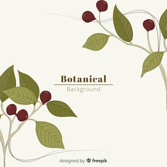 Tło botaniczne