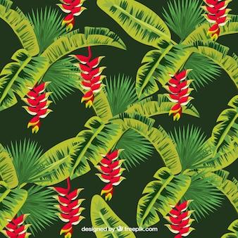 Tło egzotycznej roślinności