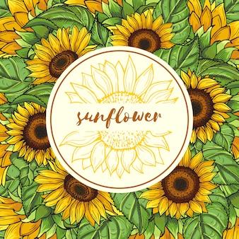 Tło ilustracja z słonecznikami i miejsce dla twój teksta