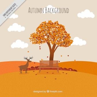 Tło jesień krajobraz z drzewa i jelenia