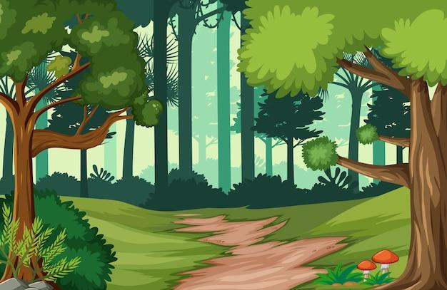 Tło krajobraz lasów tropikalnych