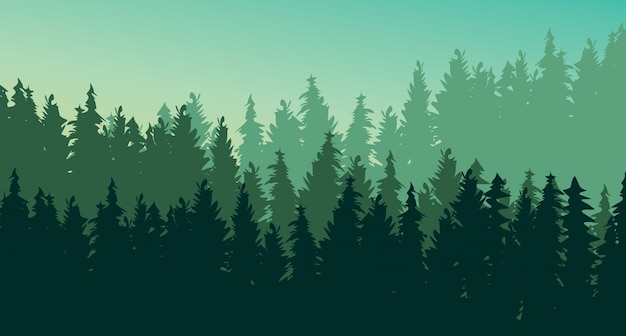 Tło krajobraz lasu sosnowego