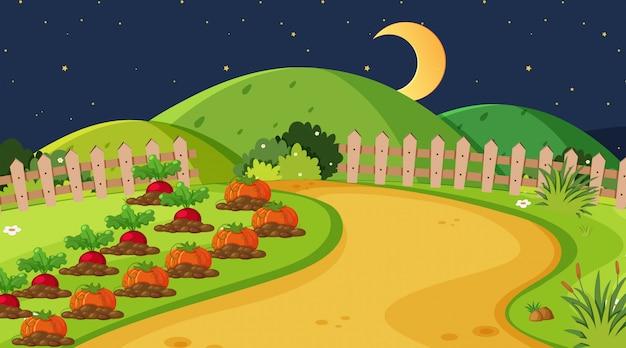 Tło krajobraz z jarzynowym ogródem przy nocą