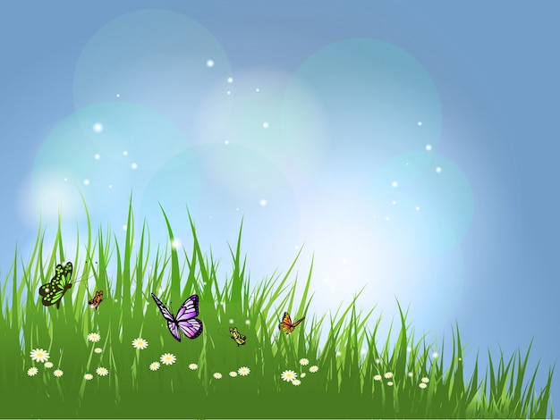 Tło latające motyle w trawie na stokrotki