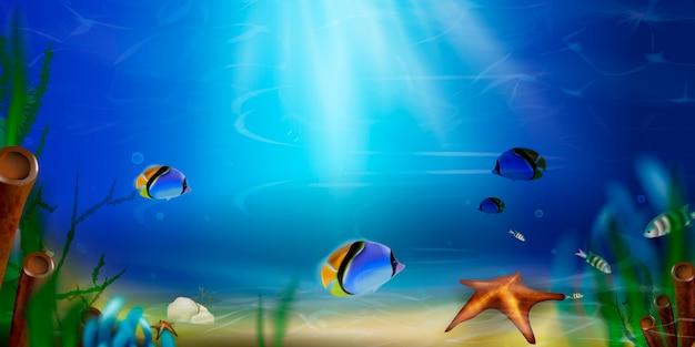 Tło lato. podwodny światowy natury sceny tło. ocean, życie na dnie morza z błękitną wodą, trawa morska, ryby egzotyczne, bąbelki, wodorosty, promienie słońca.