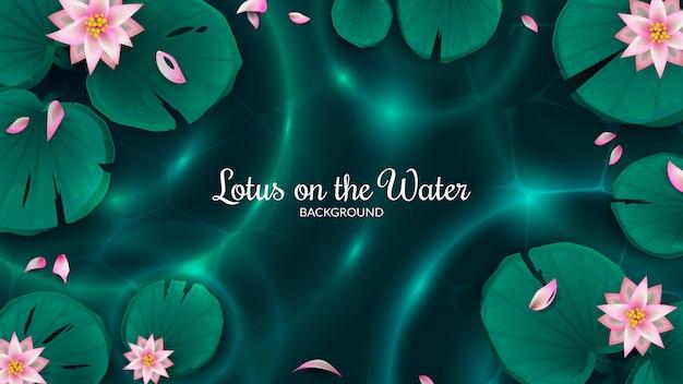 Tło lotus