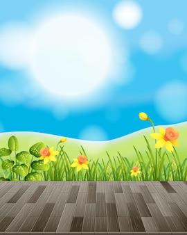 Tło natury z polem kwiatowym i zieloną trawą