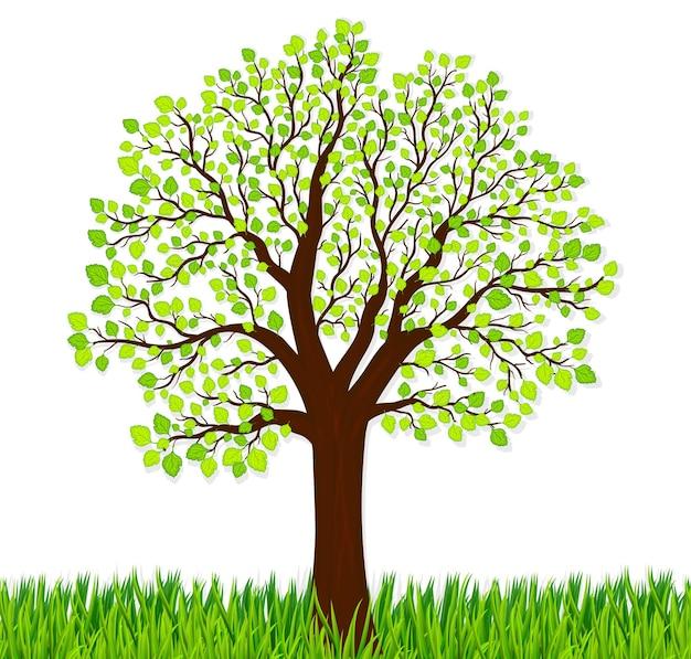 Tło natury z zieloną trawą i drzewem