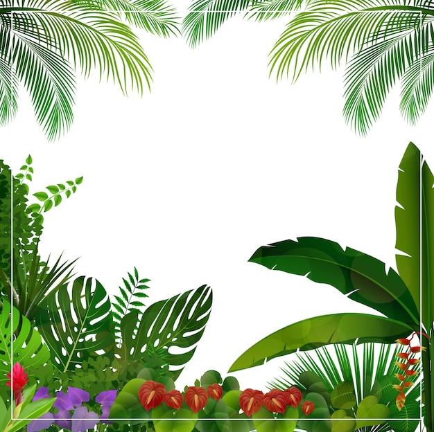 Tło ramki tropikalnej dżungli
