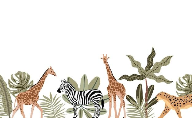 Tło safari z żyrafami, zebrą i gepardem z roślinami wokół kreskówek na białym tle