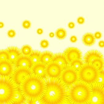 Tło słoneczniki