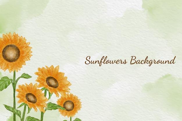 Tło słonecznikowe kwiaty