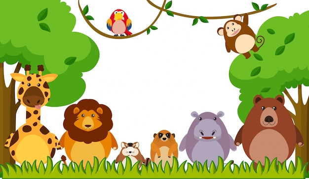Tło szablon z dzikimi zwierzętami w parku