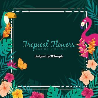 Tło tropikalne kwiaty