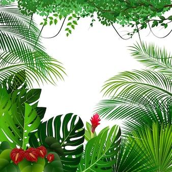 Tło tropikalnej dżungli