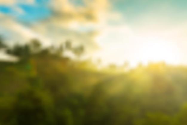 Tło wektor wschód słońca w dżungli