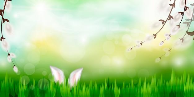Tło wiosna. natury tło z wierzbowymi gałąź i słońcem. wiosenne gałęzie.