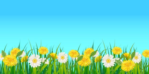 Tło wiosna szablon z kwiatów mniszek lekarski i stokrotki, rumianki, trawa