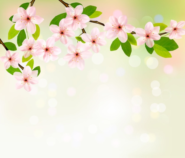 Tło wiosna z brunch kwitnących drzew z wiosennych kwiatów.