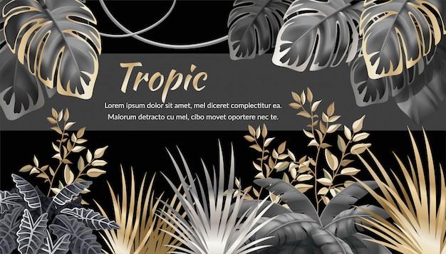 Tło z ciemnymi liśćmi roślin tropikalnych.