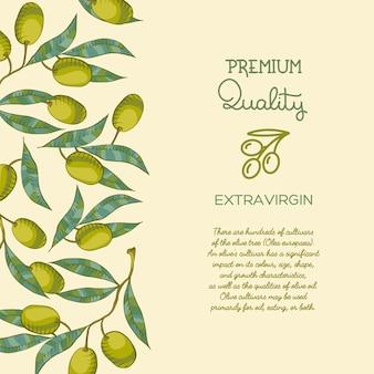 Tło z gałązką oliwną i zieloną oliwką