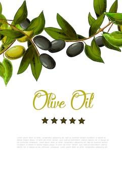 Tło z granicy czarnych i zielonych oliwek.