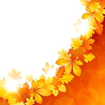 Tło z jesiennych liści