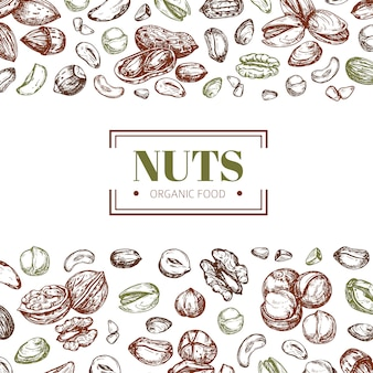 Tło z orzechami. szablon plakatu wektor plakat żywności ekologicznej nerkowca i orzecha włoskiego, pistacji i orzechów laskowych
