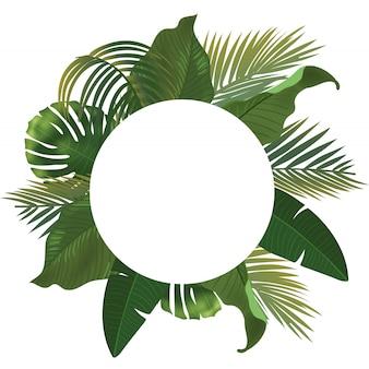 Tło z realistycznym zielonym liściem palmowym rozgałęzia się na białym tle. leżał, widok z góry