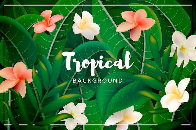 Tło z tropikalnymi kwiatami i liśćmi