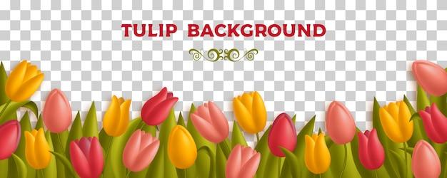 Tło z tulipanami i liśćmi. różne kolory kwiatów, takie jak żółty, czerwony i różowy. ilustracja.