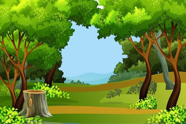 Tło zielony las sceny