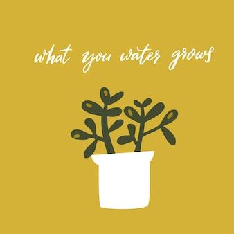 To, co podlewasz, rośnie. inspirujący cytat, odręczna mądrość. ręcznie rysowane doodle ilustracja rośliny gruboszowa w doniczce na zielonym tle. projekt wektor karty motywacyjnej.