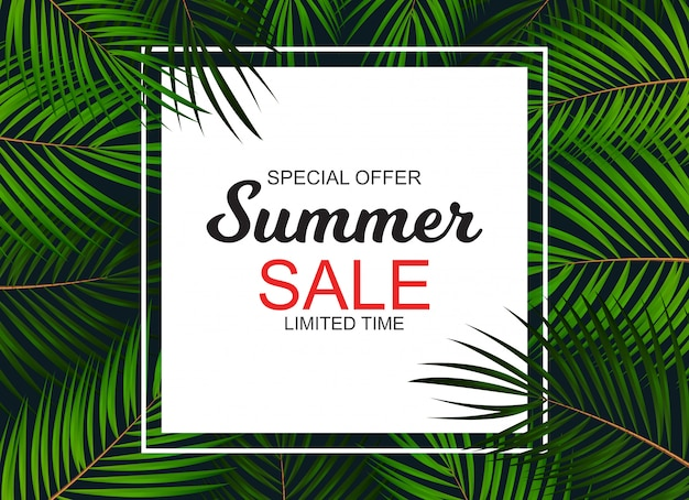 Transparent summer sale