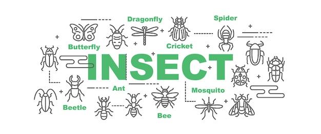Transparent wektor owadów